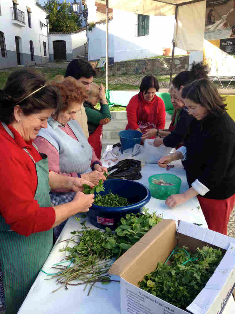 Village women chop herbs for use in sausage at a matanza festival in the village of Linares, population 300, in the Sierra Aracena, in southwestern Spain.