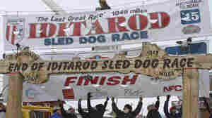 Dallas Seavey Wins 3rd Iditarod In 4 Years