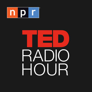 Image result for ted radio hour