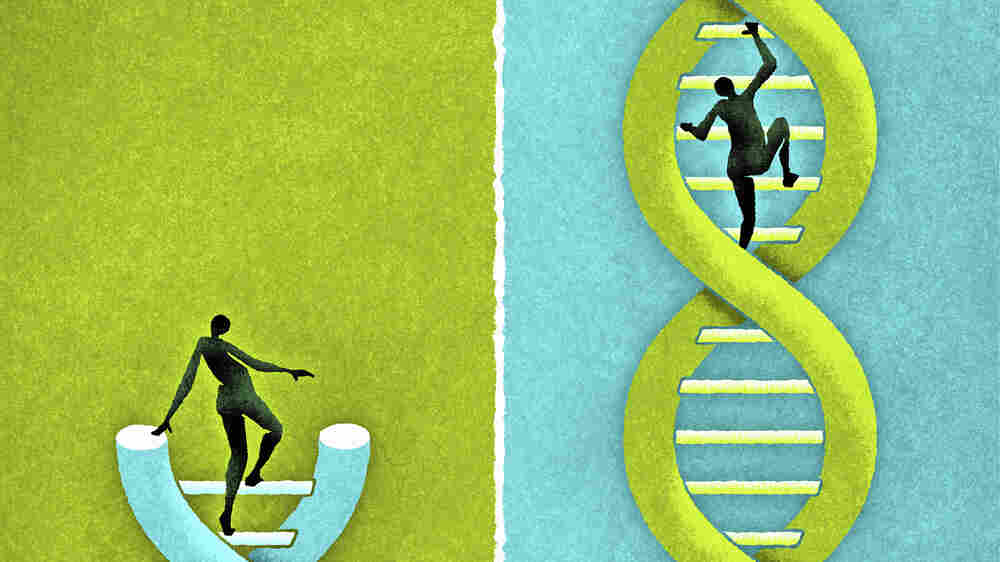 Scientists Urge Temporary Moratorium On Human Genome Edits
