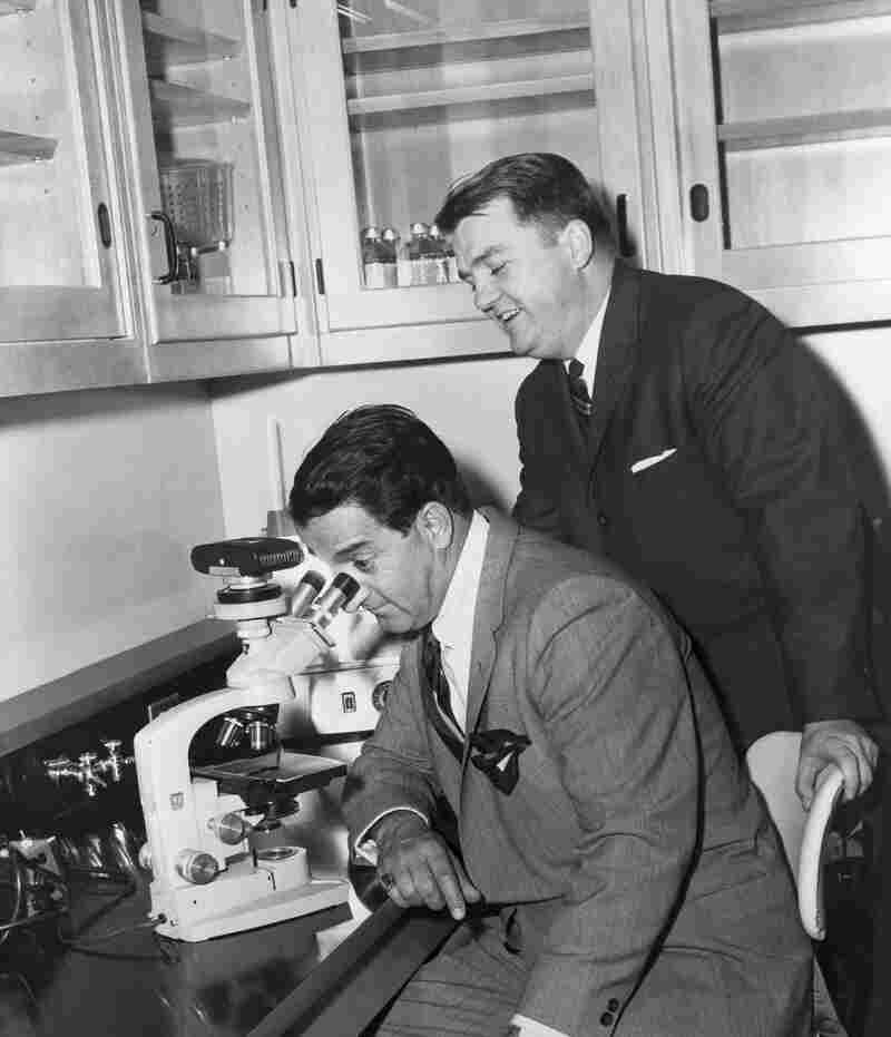 Danny Thomas looks through a microscope as Dr. Donald Pinkel stands just behind him.