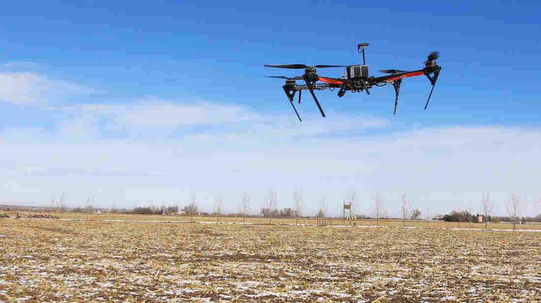 A drone built by Agribotix, a Boulder startup, flies over a farm in Weld County, Colo. The drone has a camera that snaps a high-resolution photo every two seconds. From there, Agribotix stitches the images together, helping the farmer see what's happening in a field.