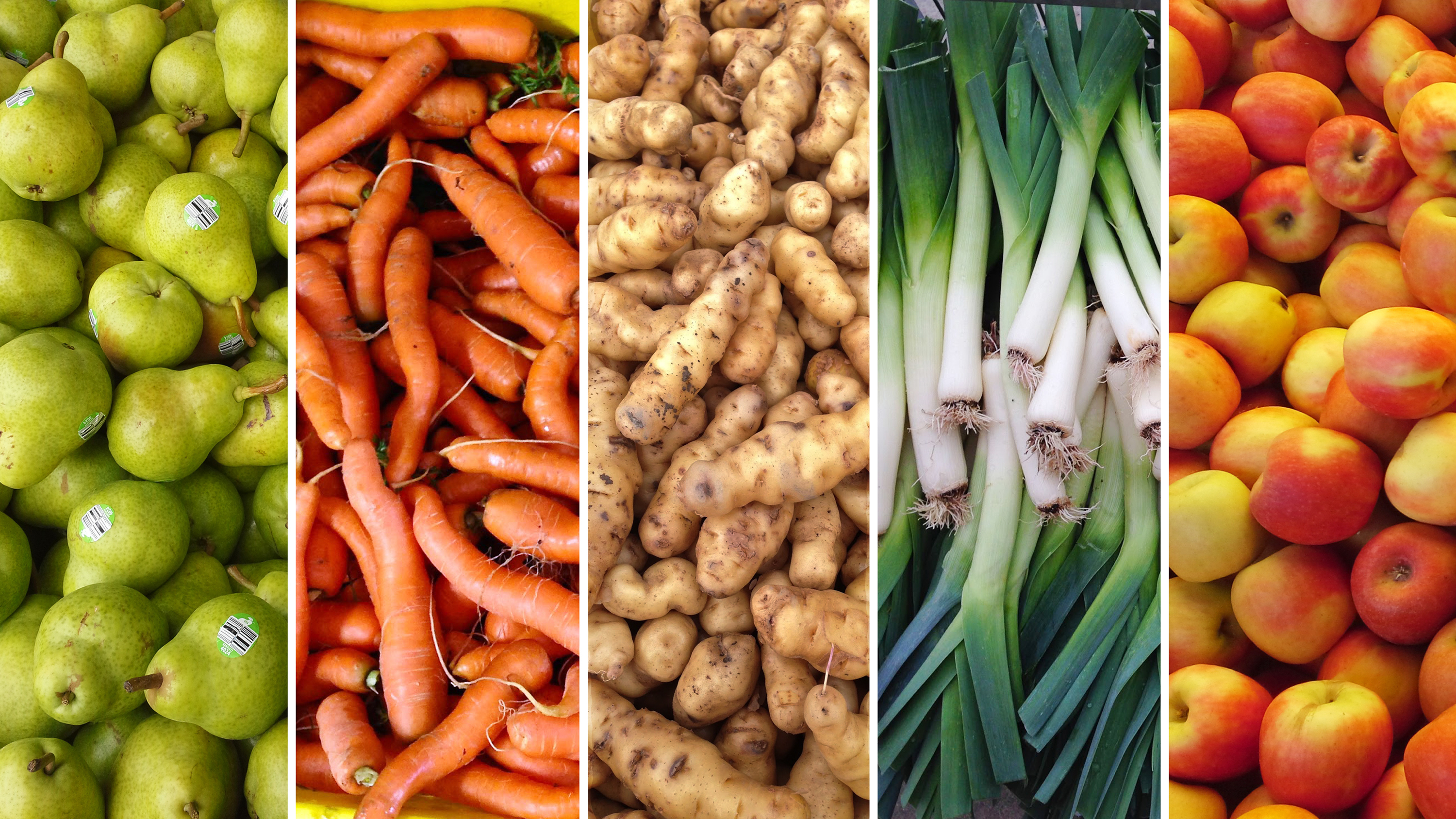 pics How to Use All the Veggies in Your CSA without Going Crazy: Part 1