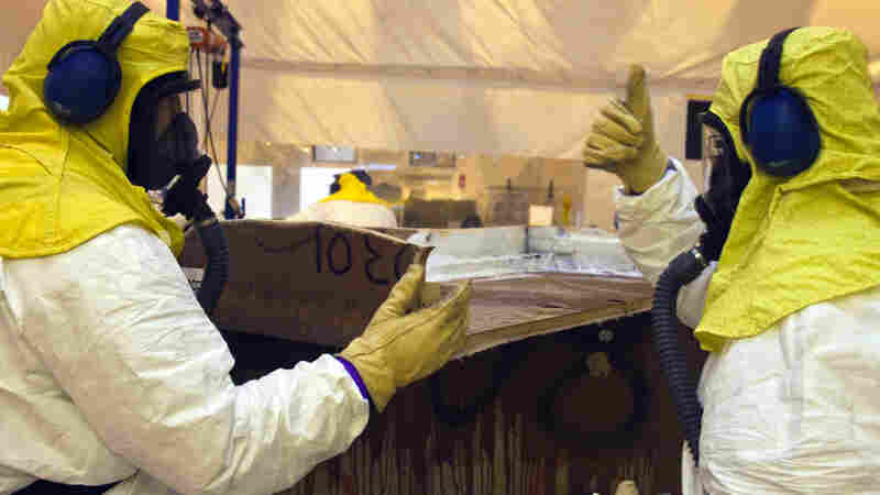 Workers at Los Alamos National Laboratory used organic cat litter to clean up nuclear waste. The litter triggered chemical reactions that later caused a drum to burst.