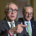 Harry Reid endorses New Yorker Schumer to replace him as top Democrat