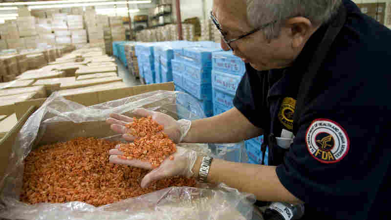 An FDA field inspector in Los Angeles checks imported shrimp, February 2009. More than a dozen federal agencies play a part in keeping food from making Americans sick. Critics say that leads to a lack of coordination, a patchwork of rules and holes in the system.