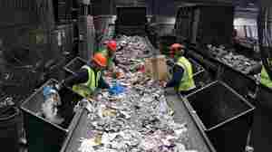 At Resource Management's materials recovery facility, workers pull plastic bags, other trash and large pieces of cardboard off the conveyor belts before the mixed single-stream recyclables enter the sorting machines.
