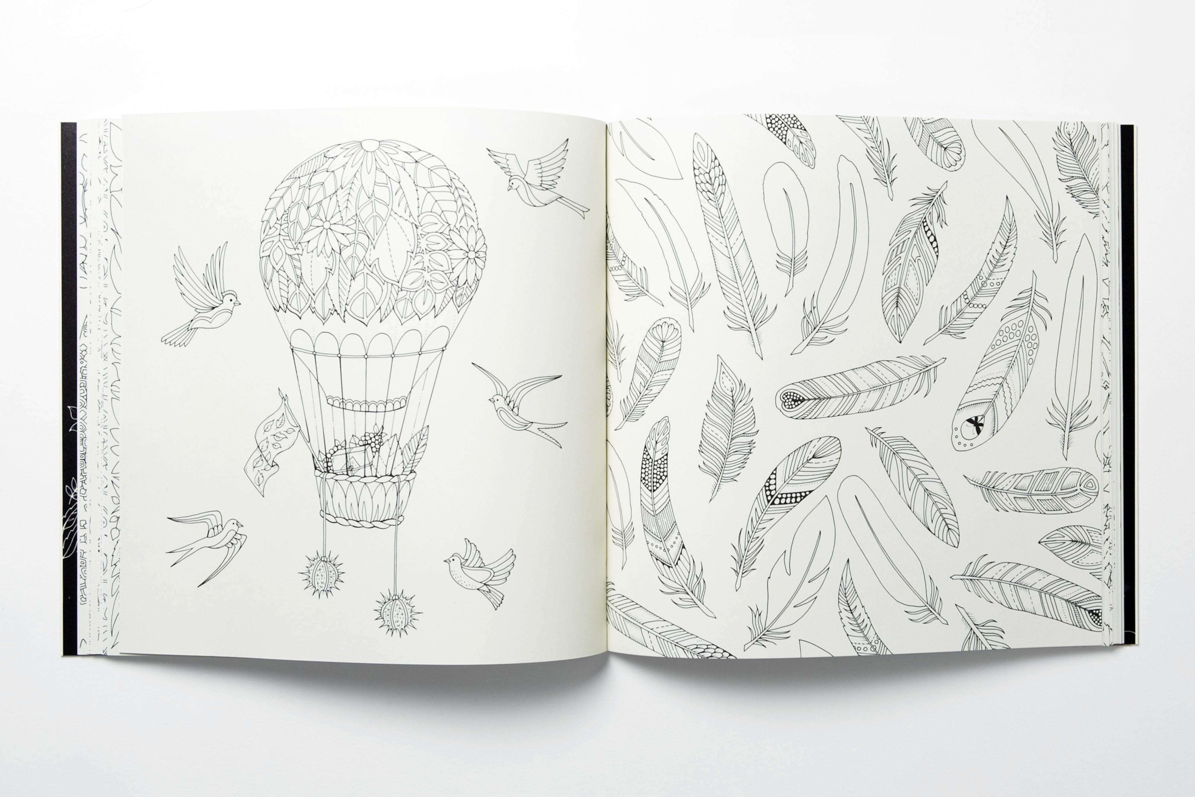 Artist Goes Outside The Lines With Coloring Books For