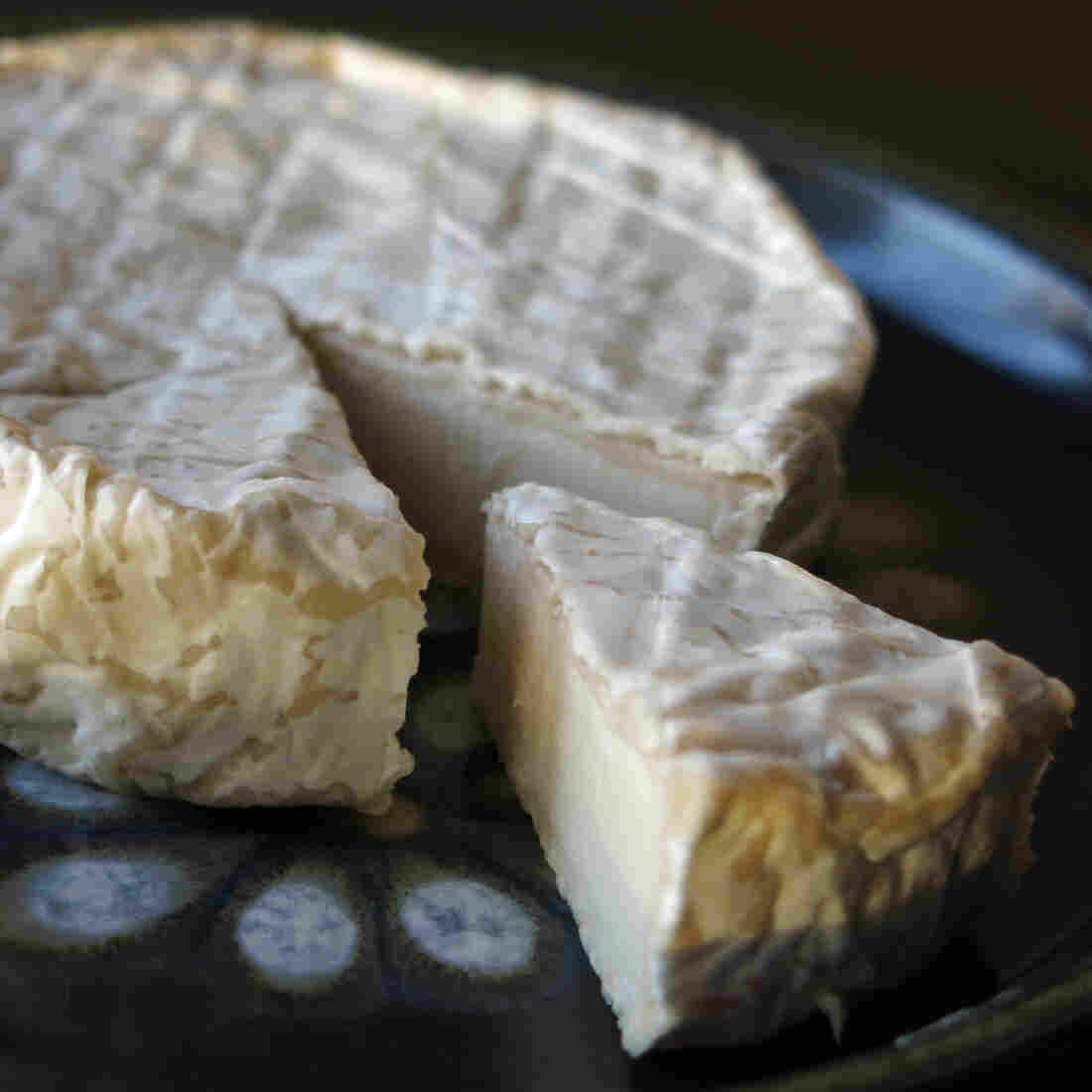 Hold The Mammal: Daring To Make Dairy-Free Cheese From Nuts