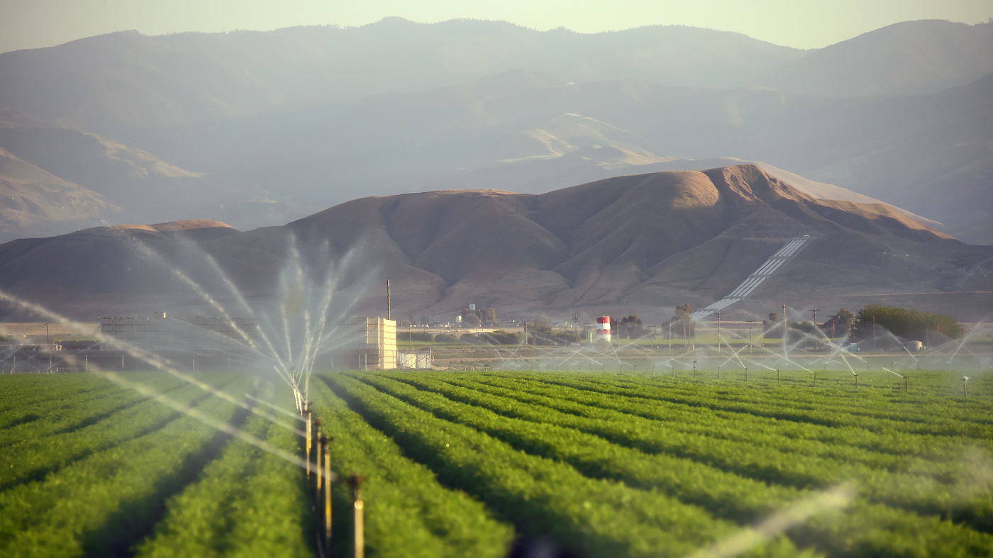 Farmers Only Reviews >> California Farmers Gulp Most Of State's Water, But Say They've Cut Back : The Salt : NPR