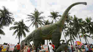 Is It Time To Resurrect The Brontosaurus?