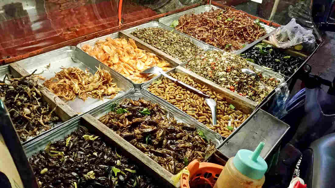 Edible insects are sold on the street in Bangkok's Sukhumvit area, including fried crickets, silkworms, grasshoppers and a whole lot of other things I can't identify and definitely don't want to.