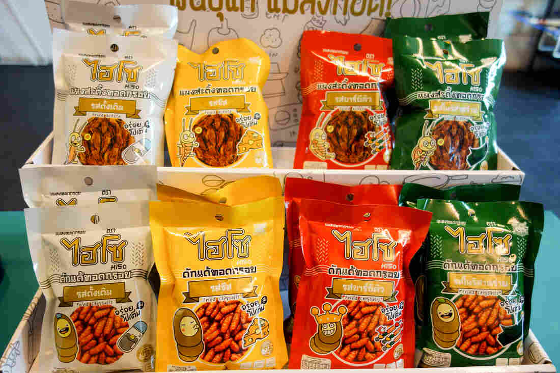 The new line of HiSo edible insects. The fried crickets are on the top row, in order: original flavor, cheese, barbecue, seaweed. The fried silkworm pupae snacks are seen on the bottom row, in the same order of flavors.