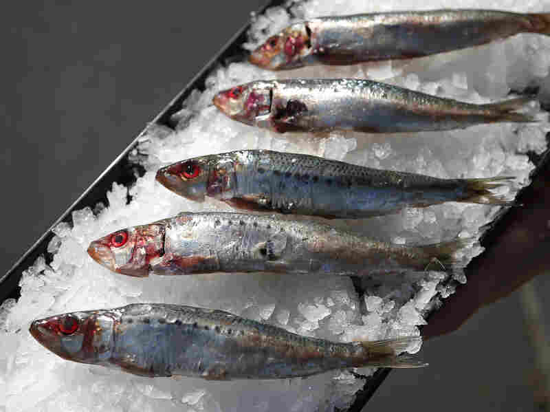 A tray of sardines in Costa Mesa, California, in this November 17, 2014 photo. Plummeting sardine populations force a complete ban on sardine fishing off the U.S. West Coast for more than a year.
