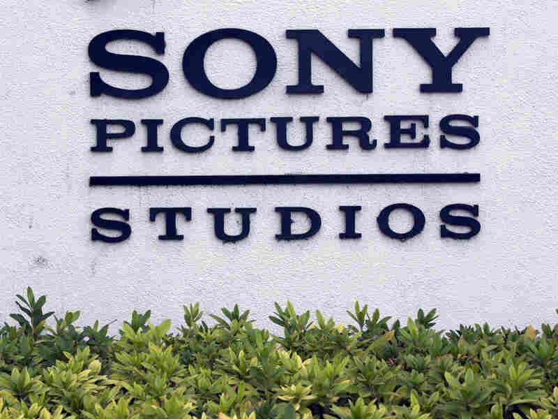 Large amounts of data hacked from Sony Pictures last year have been made public online by WikiLeaks