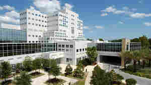 The Mayo Clinic in Jacksonville, Fla., is one of Medicare's 5-star rated hospitals.