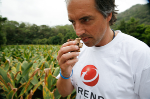 Blue Zones' Dan Buettner smells turmeric grown in Okinawa.