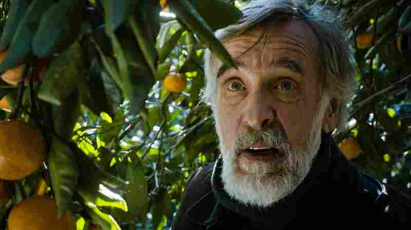 "Ivo (Lembit Ulfsak) is a pacifist. But NPR film critic Bob Mondello says Tangerines is an ""object lesson in the resilience of ancient animosities."""