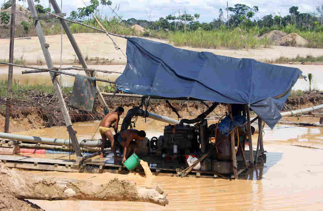 By some estimates, there are now tens of thousands of illegal miners working the eastern Peruvian province of Madre de Dios.