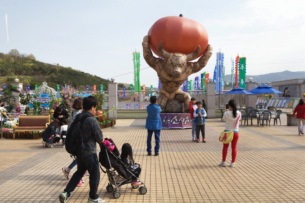 Outside the stadium where the Cheongdo Bullfighting Festival takes place every spring in the southern part of South Korea.
