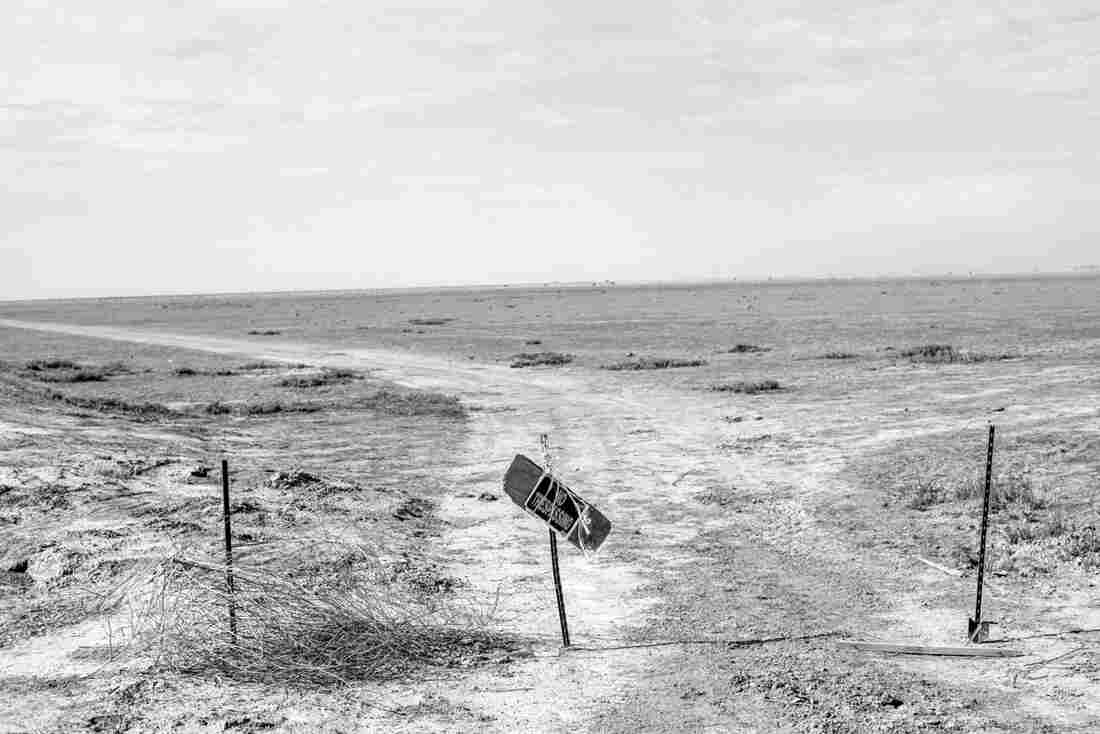 A dry pasture near Alpaugh, Calif.