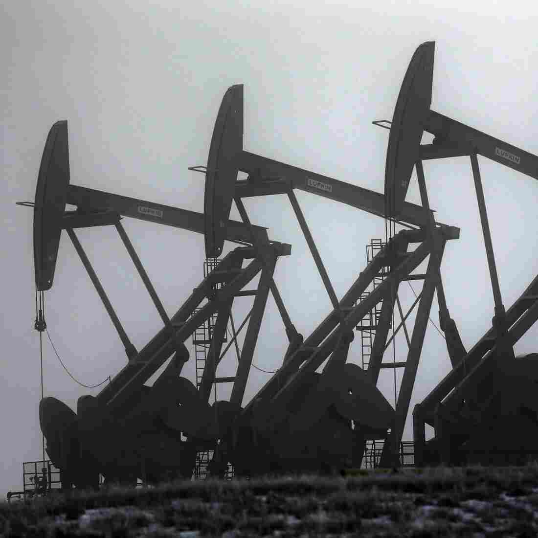 Oil pump jacks in Williston, N.D., in December. Oil prices have been on the rise, but some analysts say the global economic slowdown, fracking and the rise of alternative energy will mean less demand and lower prices.