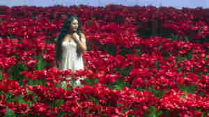 Mezzo-soprano Anita Rachvelishvili sings amid a massive field of poppies in a Metropolitan Opera production of Borodin's Prince Igor.
