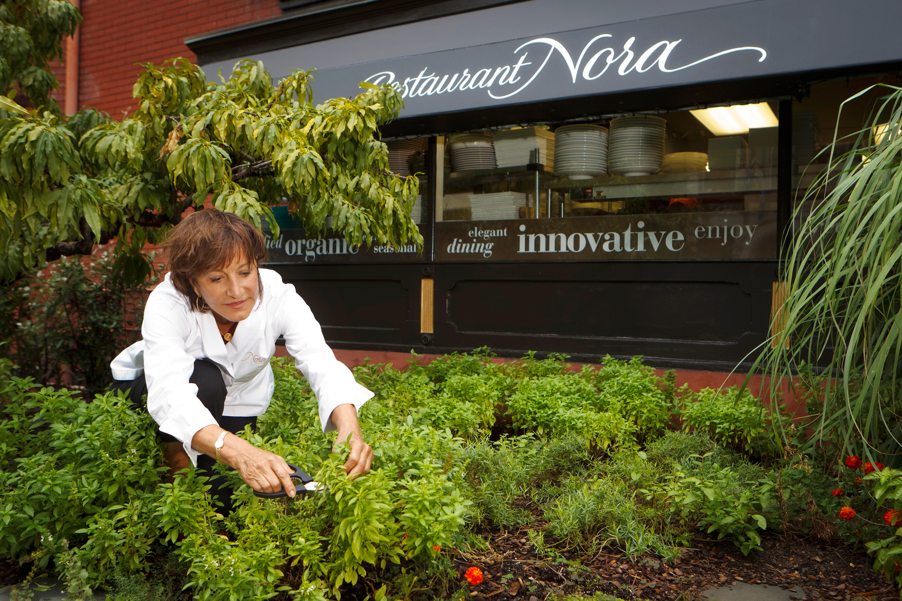 In 'Organic Life,' The Making Of America's First Certified Organic Restaurant