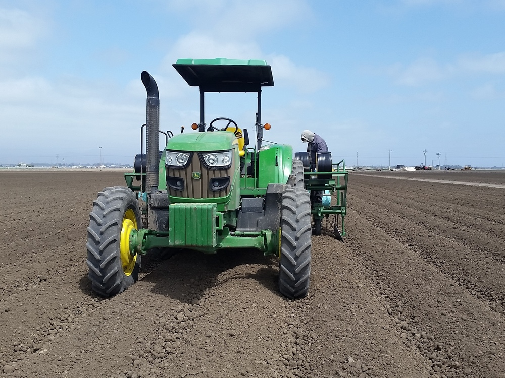 Tanimura & Antle workers use tractors to install drip tape into fields that will be used to grow lettuce and other crops in California's Salinas Valley.