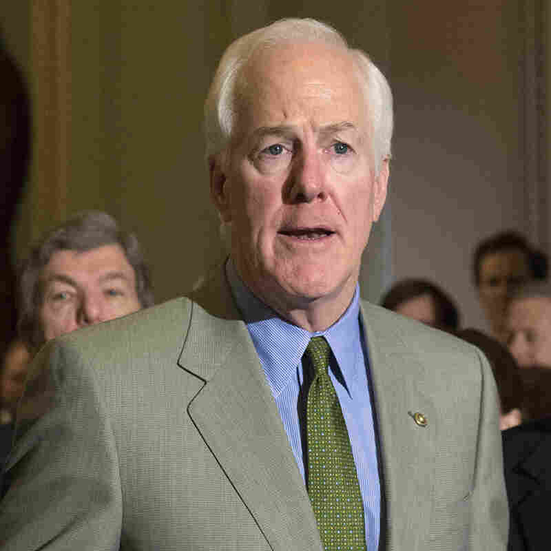 """""""The whole idea of a young man dying in police custody, the confrontations with police, the looting and burning of innocent minority owned businesses,"""" Texas Republican Sen. John Cornyn said on the Senate floor this month. """"The question arises, what can we do?"""""""