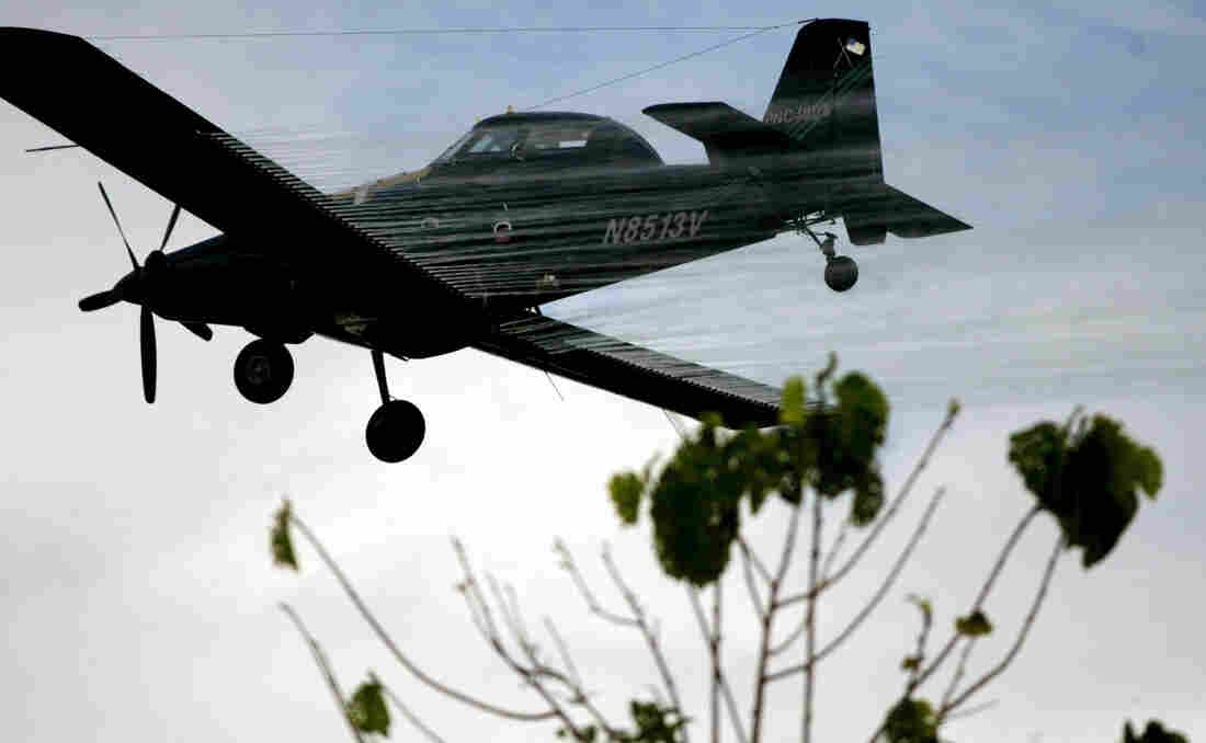A plane sprays coca fields in San Miguel, Colombia, in 2006. The Colombian government announced this week that it is phasing out the U.S.-backed aerial coca-eradication program over health concerns.