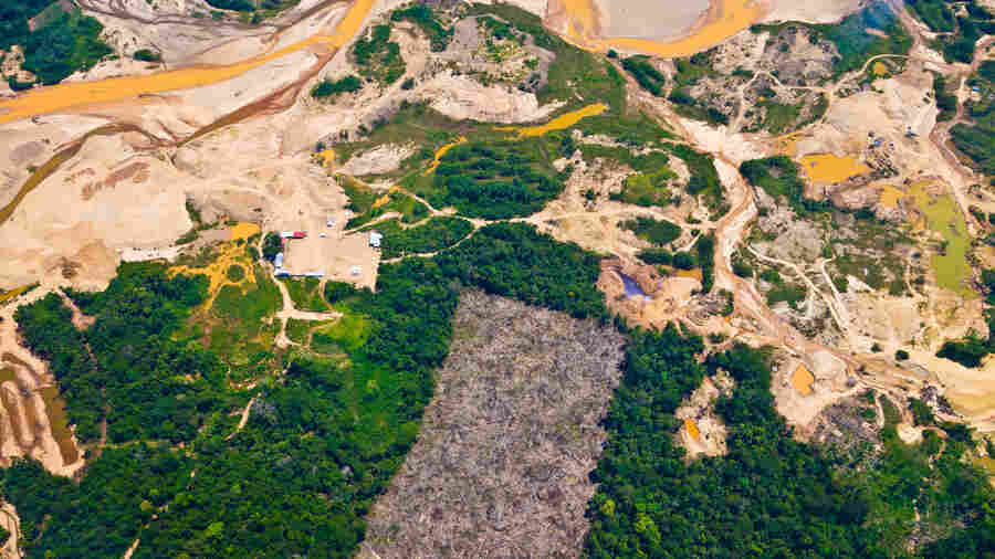 the effects of gold mining The effects of gold mining on the landforms reading: effects of mining | geology environmental effects 99 tons of waste are generated per ton of copper, with even.
