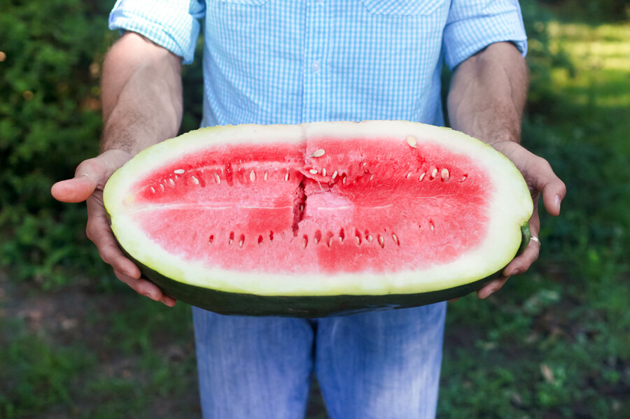 beautiful sweetest watermelon Part - 4: beautiful sweetest watermelon good looking