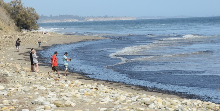 Oil Spill Near Santa Barbara Fouls California Coastline