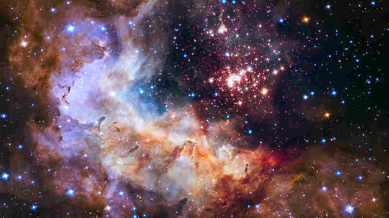The cluster and star-forming region Westerlund 2.