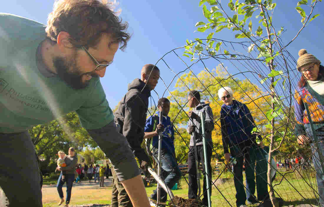 Phil Forsyth, executive director of the Philadelphia Orchard Project, leads a fruit tree planting at Bartram's Garden in West Philadelphia.