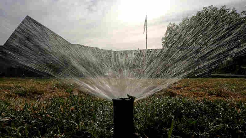 Sprinklers water a lawn in Sacramento, Calif.