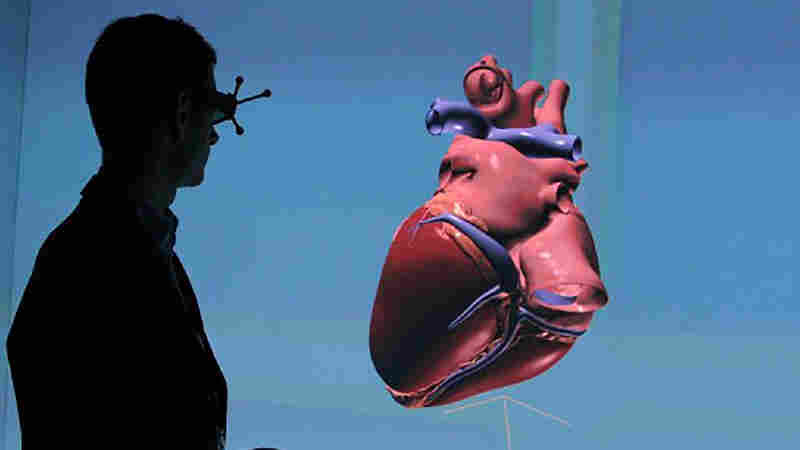 A 3-D simulation of a human heart created by The Living Heart project.