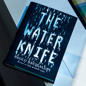 What If The Drought Doesn't End? 'The Water Knife' Is One Possibility