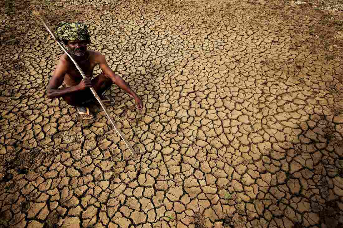 Heat Wave Claims More Than 750 Lives In India
