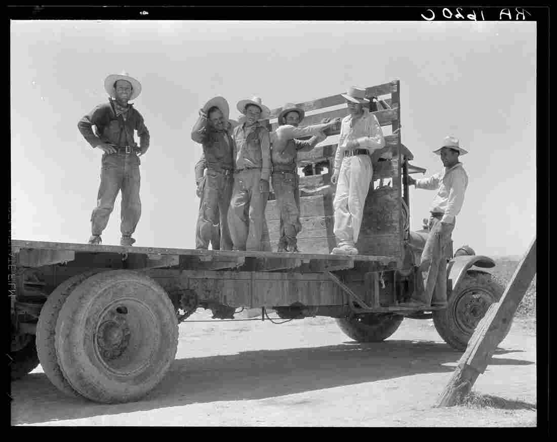 """Off for the melon fields (Mexican labor)."" Imperial Valley, Calif. 1935"