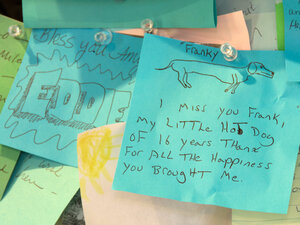 Thousands of notes paying tribute to bygone pets line the walls of Dog Mountain's chapel.