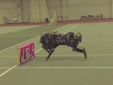 MIT's Cheetah robot.