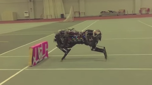 When Robots Run