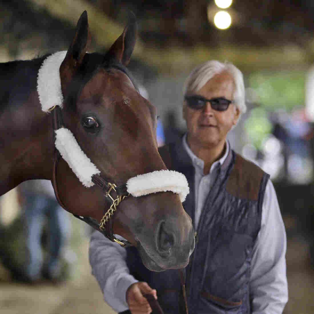 American Pharoah and trainer Bob Baffert at Belmont Park in Elmont, N.Y. American Pharoah will try to become horse racing's first Triple Crown winner since 1978.