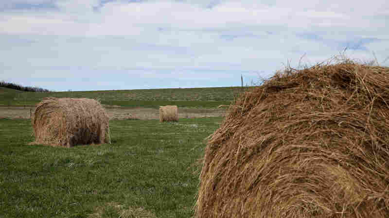 As candidates, staff and media flood Iowa, there will inevitably be photo ops with grain silos and bales of hay.
