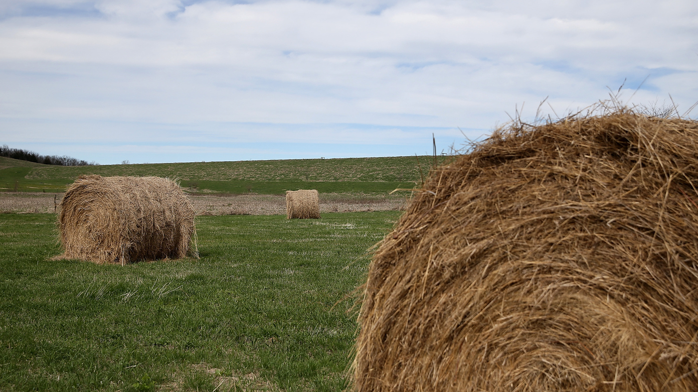 The Iowa Beyond Hay Bales Corn Fields And Deep Fried Butter Its - Bales