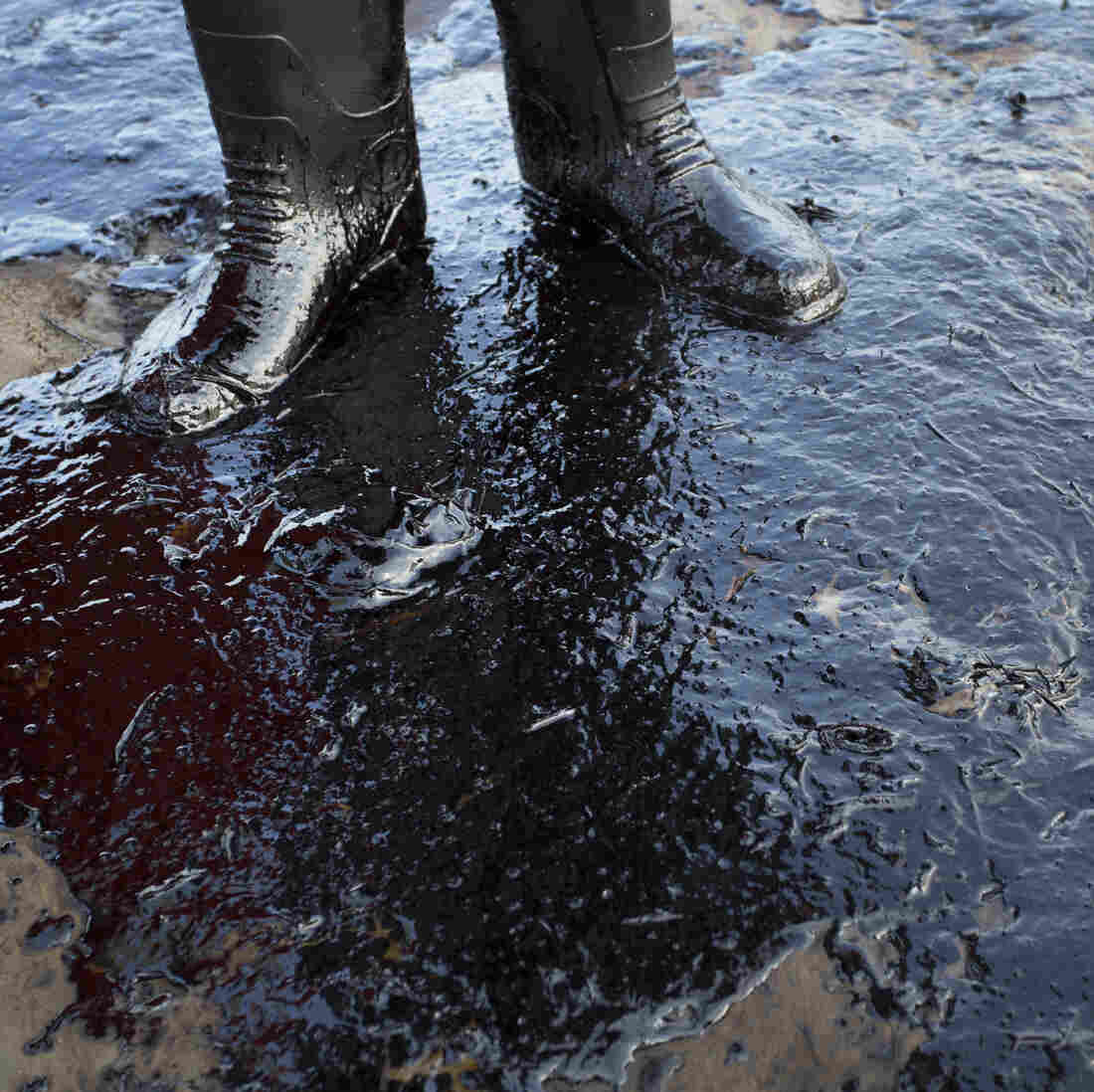 Oil fouls the shore north of Goleta, Calif., following a pipeline rupture near Refugio State Beach.