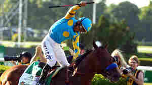 After 37 Years, A Triple Crown Winner At Last: American Pharoah Sweeps The Races