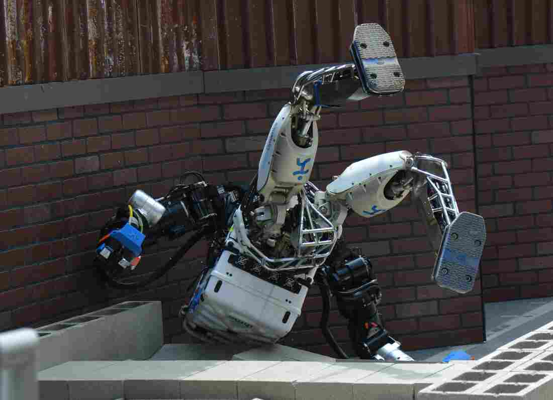 The robot from Florida-based Team IHMC Robotics takes a tumble as it tries to walk over rubble. This team came in second place and won a $1 million prize.